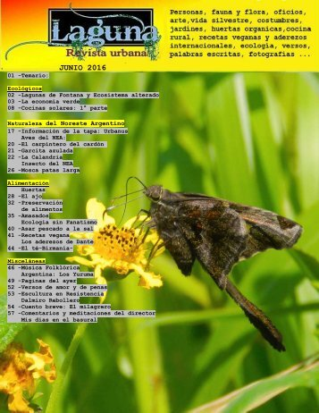 Laguna, revista urbana-junio 2016-