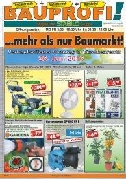 Bauprofi_KW24_online