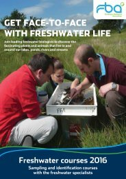 Get face-to-face with freshwater life