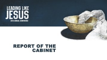REPORT OF THE CABINET