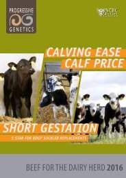 Calving Ease Calf Price Short Gestation