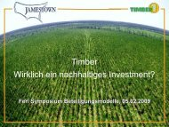 JAMESTOWN Timber 1