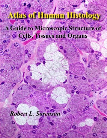 atlas of human histology guide