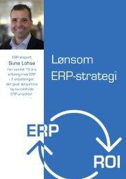 Indhold i ERP Strategibogen