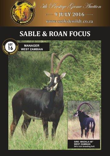 Sable & Roan e-alert