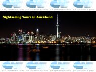 Sightseeing Tours in Auckland
