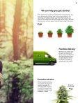 Premium handpicked cannabis seeds - Page 5