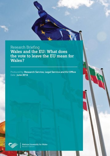 Wales and the EU What does the vote to leave the EU mean for Wales?