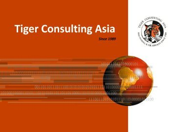 Tiger Consulting Asia