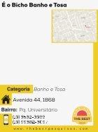 RevestaPiracicabaeRegião210616.compressed (1) - Page 3