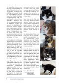 Samtpfote-Sommer-2016 - Page 6