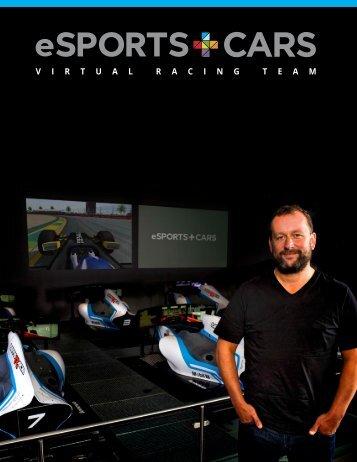 VIRTUAL PRO RACE TEAM