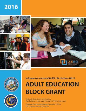 adult study grant
