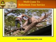 Tree removal Service in Dallas| Robertson Tree Service