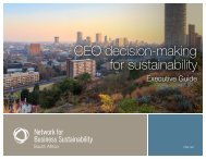 CEO decision-making for sustainability