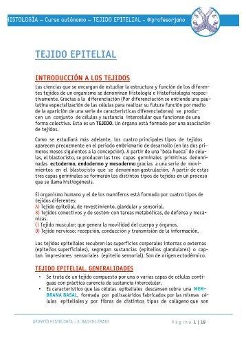 APUNTES EPITELIAL TEJIDO