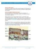 APUNTES EPITELIAL TEJIDO - Page 5