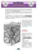 APUNTES TEJIDO CARTILAGINOSO - Page 3