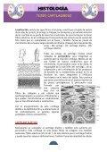 APUNTES TEJIDO CARTILAGINOSO - Page 5