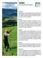 armi e tiro - Page 5