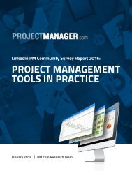 PROJECT MANAGEMENT TOOLS IN PRACTICE