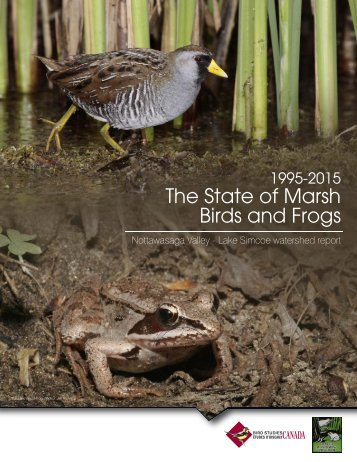 The State of Marsh Birds and Frogs