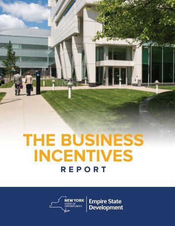 THE BUSINESS INCENTIVES