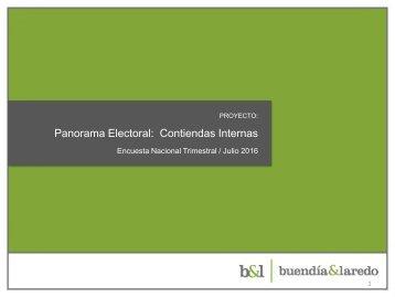 Panorama Electoral Contiendas Internas