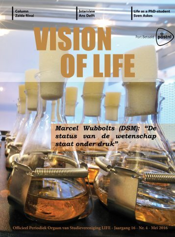 Vision 4_site