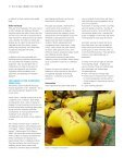 SAFETY IN MOORING - Page 3