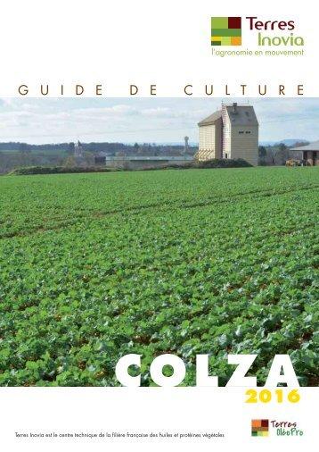 Colza associ un couvert de l gumineuses g lives - Chambre agriculture poitou charentes ...