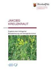 Jakobskreuzkraut - Landesamt für Umwelt, Wasserwirtschaft und ...