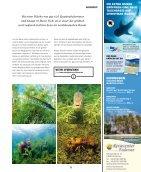 SilentWorld Berich über die Tauchbasis Stechlinsee - Seite 3