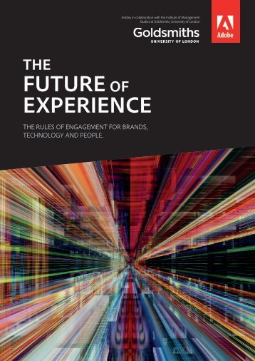FUTURE EXPERIENCE