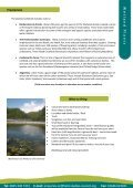 Wetland Plants - Page 2