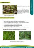 Wetland Plants - Page 3