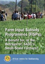 Farm Input Subsidy Programmes (FISPs)