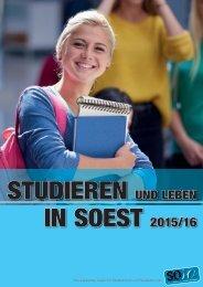 SOso Notizen_2015