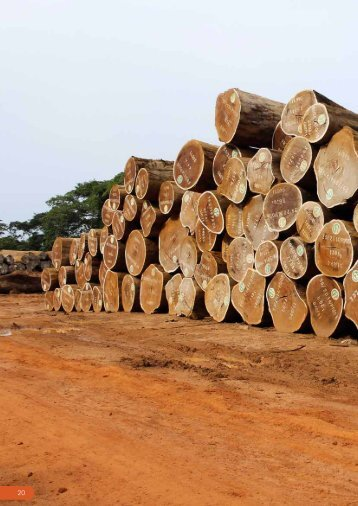timber sector