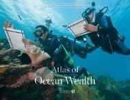 Ocean Wealth
