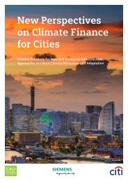 New Perspectives on Climate Finance for Cities