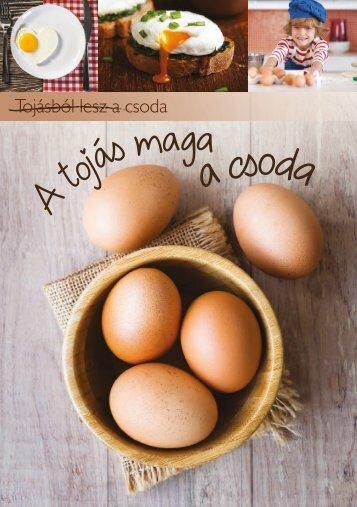 A tojás maga a csoda - Tojás kisokos
