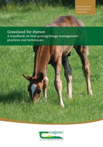 Grassland for Horses