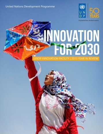 UNDP INNOVATION FACILITY | 2015 YEAR IN REVIEW