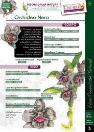 ORCHIDEA NERA