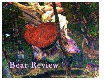 Bear Review