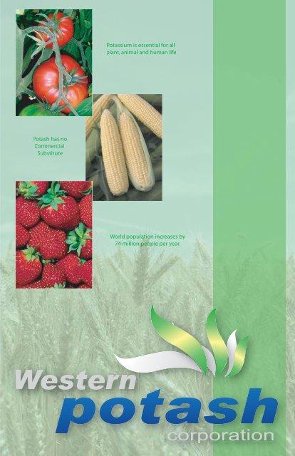 Western Potash Brochure