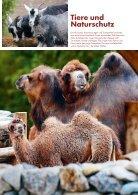 Zoo Zürich Jahresbericht 2015 - Page 5
