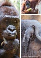 Zoo Zürich Jahresbericht 2015 - Page 6