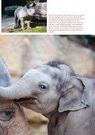 Zoo Zürich Jahresbericht 2015 - Page 7
